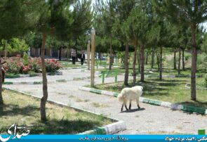 گلایه مردم از وضعیت نابسامان پارک کوی لاله/ ضرورت ساماندهی و زیباسازی فضای پارک