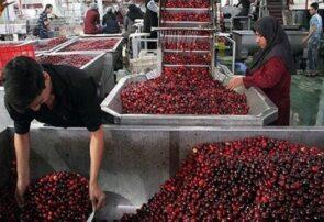 فعالیت ۷۶۰ کارخانه صنایع تبدیلی و غذایی با سطح تکنولوژی بالا در آذربایجان شرقی