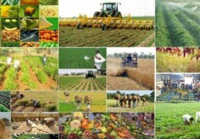 افتتاح ۸۱ پروژه کشاورزی با اعتبار ۱۲۳۰ میلیارد ریال در آذربایجان شرقی