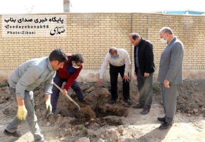 کاشت بیش از ۴۰ اصله نهال در اطراف ورزشگاه کارگران شهرستان بناب+ تصاویر