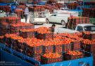 سهم ناچیز از سبد صادرات محصولات تبدیلی کشاورزی در روزهای کرونایی
